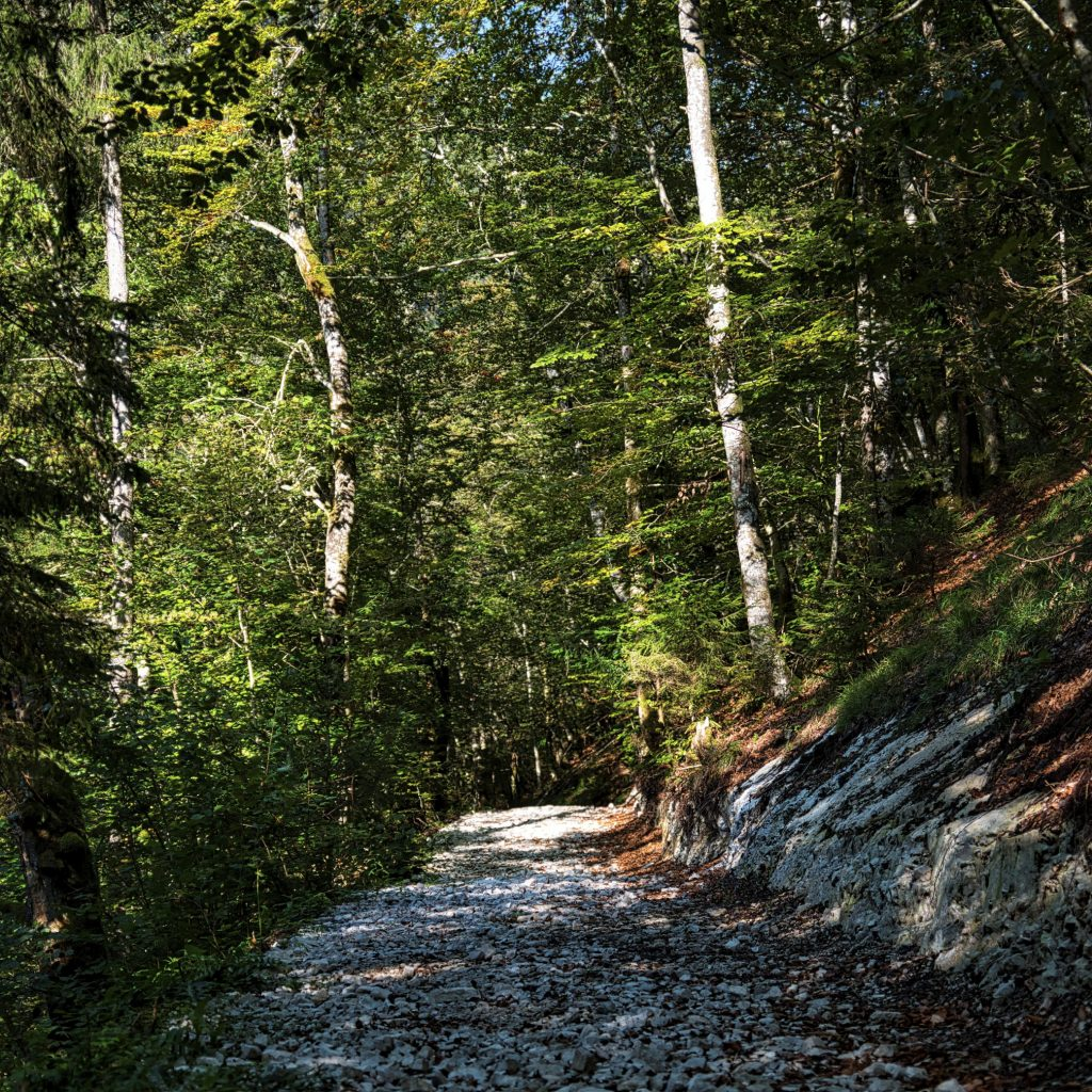 Kogler Wasserfälle 1